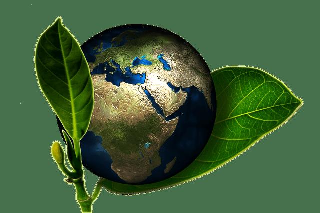 ecologisch warmtenet