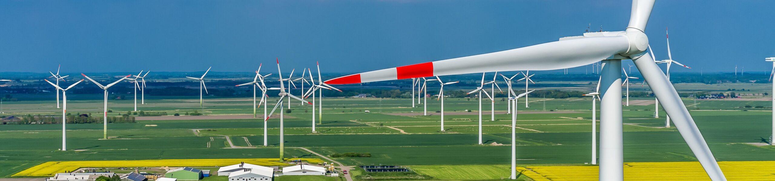 Groepsaankoop van 100%-groen elektriciteit en van gas